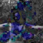 Uitgestorven_dans_01